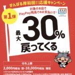 岸和田があつい!paypayで30%ポイント還元キャンペーン使ってみました